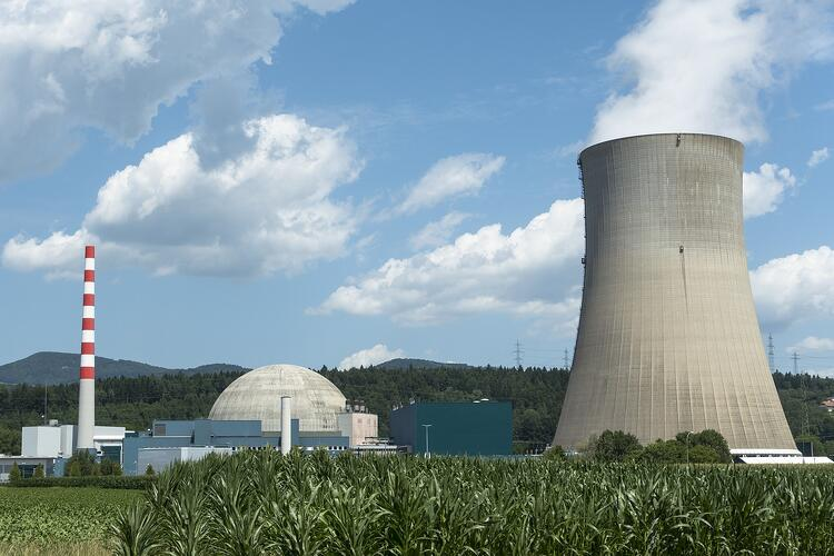 Nuclear Plant Asset Management